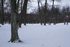 Drottningholm Slott - il parco