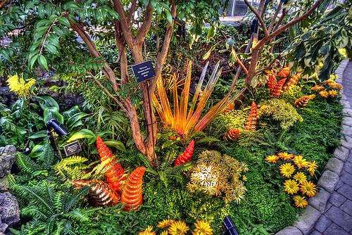 foto-menarik.blogspot.com - FOTO : Bunga menakjubkan dari kaca.