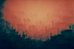 Zombie's Eye View (Jamie Mellor) Tags: graveyard edinburgh cosinacx1 redscale