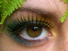 My eye.1 (Silent Orchestra) Tags: girls people fern eye girl closeup outside eyes eyelashes eyeshadow browneye darkeye hazeleye silentorchestra closeupofeye laughlovehope