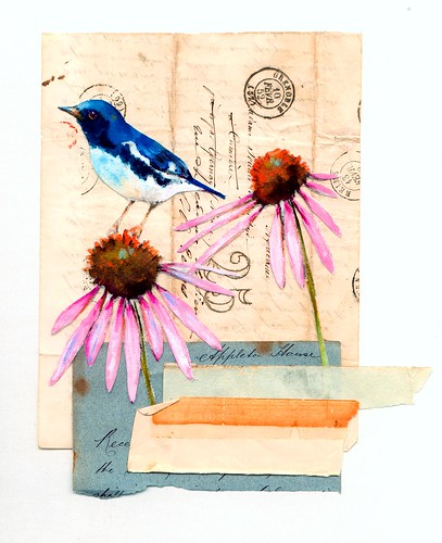 Bluebird & Coneflower Print
