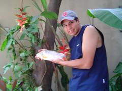 el pez tiburon (gus_325) Tags: antes