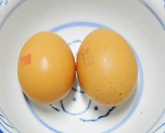 Chicken Eggs. Duh.