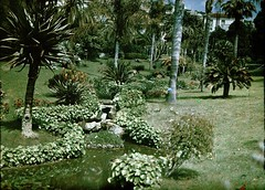Ruisseau dans les jardins de Monte-Carlo