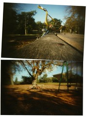 homemade pinhole camera photos (hey b-enjamin!) Tags: camera trees fish nature truck jack bmx collie pin russell hole border wheels tub mindy results ripper ringwood ogk