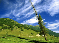 altay steppe - sting (Csbr) Tags: 2005 china travel blue trees summer sky white mountain west green clouds landscape flora border north meadow august tent xinjiang nomad grassland centralasia kanas kazakh canonixus400 steppe taiga altay