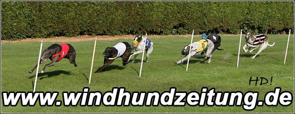 Greyhound_Finale_R