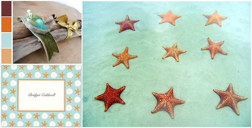soothing starfish