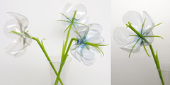 Plastic Flowers (weggart) Tags: flowers ecology bottle handmade plastic recycling reuse upcycling