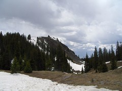 HPIM1236 (jimvickers) Tags: colorado elk rockymountainnationalpark continentaldivide bouldercreekpath summer2008