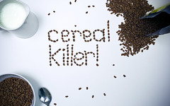 cereal killer ! (lutonian) Tags: wallpaper brown kitchen breakfast reflections milk rice box iso400 cereal spoon bowl flashphotography jug cropped f11 cocopops cerealkiller 26mm stilllifephotography canonphotography strobist 1200sec lightroom2 damniwishidtakenthat workmusicphotokformfunctionvol2 catchcolourbrown