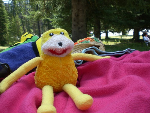 Not Sleepy Flat Eric
