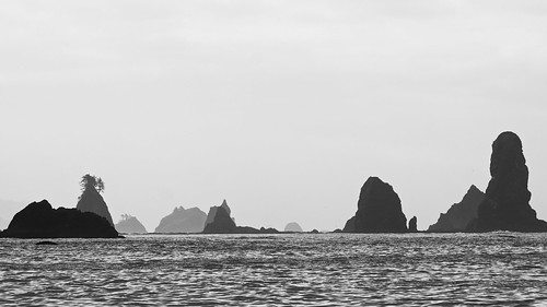 Black and White Sea Stacks
