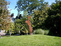 Campus Moose?