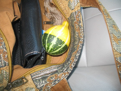 contraband gourd