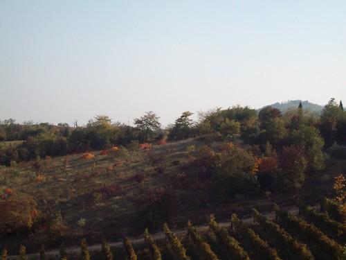 Monte cecilia