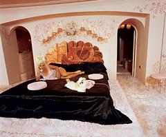 Jane Mansfield's bed (lorryx3) Tags: pink black puppy mirror heart jane satin mansfield janemansfield pinkphone celebrityhomes