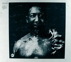 Muddy Waters - After the Rain (kevin dooley) Tags: music favorite art beautiful wow interesting fantastic flickr pretty very 33 good album gorgeous awesome blues award superior super best most cover winner stunning excellent record much muddywaters incredible breathtaking exciting rpm phenomenal