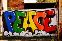 PEACE (Anarchivist Digital Photography) Tags: peace
