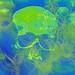 Skull's Evil Breath Underwater
