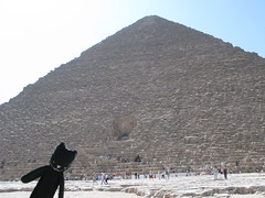 A Travel Kitty at the Pyramids? Shecky puts Africa on the TKP map!