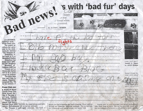 Found - Bat Blog