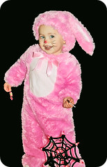 Bunny (boopsie.daisy) Tags: pink baby holiday cute rabbit bunny halloween one 1 dance costume candy sweet or spiderweb adorable sadie whiskers boogie treat trick