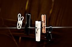 Die Zwitscher-Maschine/The Twittering Machine (nikkorsnapper) Tags: clotheslines clothespins paulklee diezwitschermaschine thetwitteringmachine