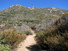 Heading up the Fobes Trail Photo