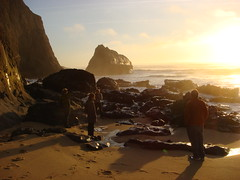 MartinsBeach_2007-193 (Martins Beach, California, United States) Photo