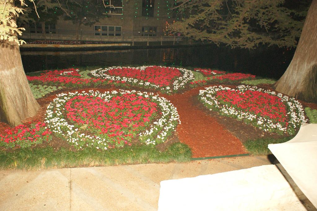 Riverwalk_flowers