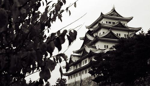 Nagoya Castle 02