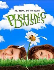 cartel de la serie