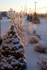 2008_12_13_2498 (amymengel) Tags: storm ice stillwater albanyny
