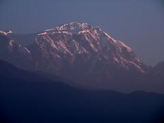 1 (66) (venkatesh4076) Tags: nepal sunrise pokhara annapurna himalayas sarangkot dhaulagiri pewa macchapucharre