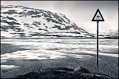 brrrr.. swimming (heavenuphere) Tags: bw lake snow mountains cold ice sign norway landscape brrrr noorwegen haukeli splittoning haukelifjell haukeligrend