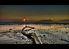 Reaching out. ([ Kane ]) Tags: wood pink sky cloud reflection tree beach water clouds log sand branch dusk australia brisbane explore qld stick ripples kane gledhill aplusphoto kanegledhill kanegledhillphotography
