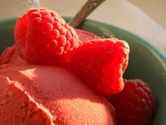 Raspberry Sorbet (Vegan Feast Catering) Tags: light cool yum wine rich fresh raspberry refreshing flavorful zin