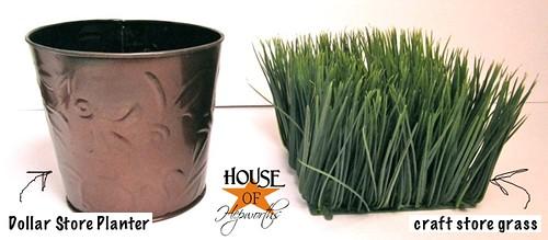 wheat_grass_dollar_store_03