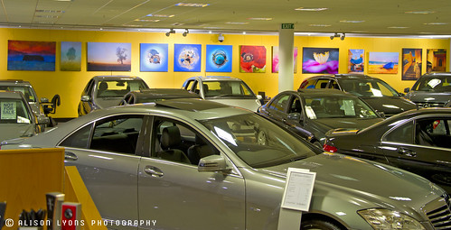 Mercedes Gallery by alison lyons photography