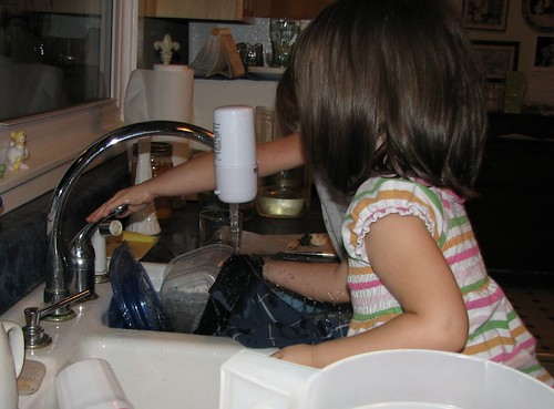 Grandma's dishwashers