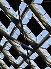 Den Haag CS (by_irma) Tags: roof architecture denhaag architectuur dak denhaagcs