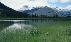 Mount Rundle - Banff (yorkiemimi) Tags: mountain lake canada nature landscape scenery
