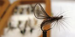 Jens Pilgaards Origami Wings