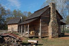 Gray Court Cabin 1