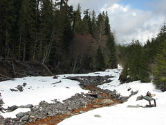Kautz Creek (Great Beyond) Tags: road park county trip trees snow cold forest canon geotagged outdoors is washington nationalpark spring highway paradise power shot pacific northwest nps 7 roadtrip powershot mount national mountrainier rainier mountrainiernationalpark pacificnorthwest wa pierce wilderness washingtonstate nationalparks s3 range cascade geotag backwoods tahoma cascaderange wilds highway7 longmire piercecounty canons3is powershots3 roughcountry paradisewashington