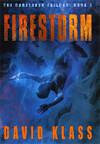 Firestorm by David Klass