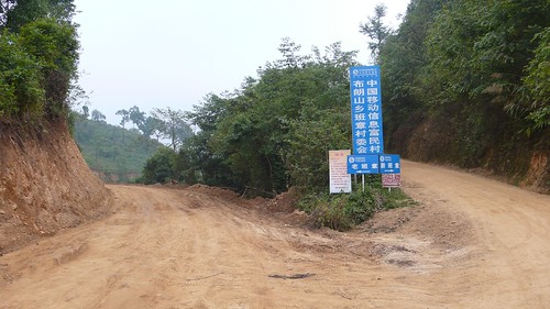 Left road - Lao (Old) Banzhang, to the right - Xin (New) Banzhang