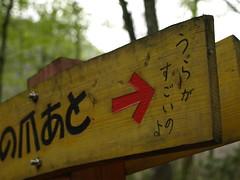 shirakami (69)