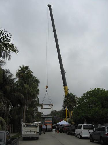 palms modular 1.jpg
